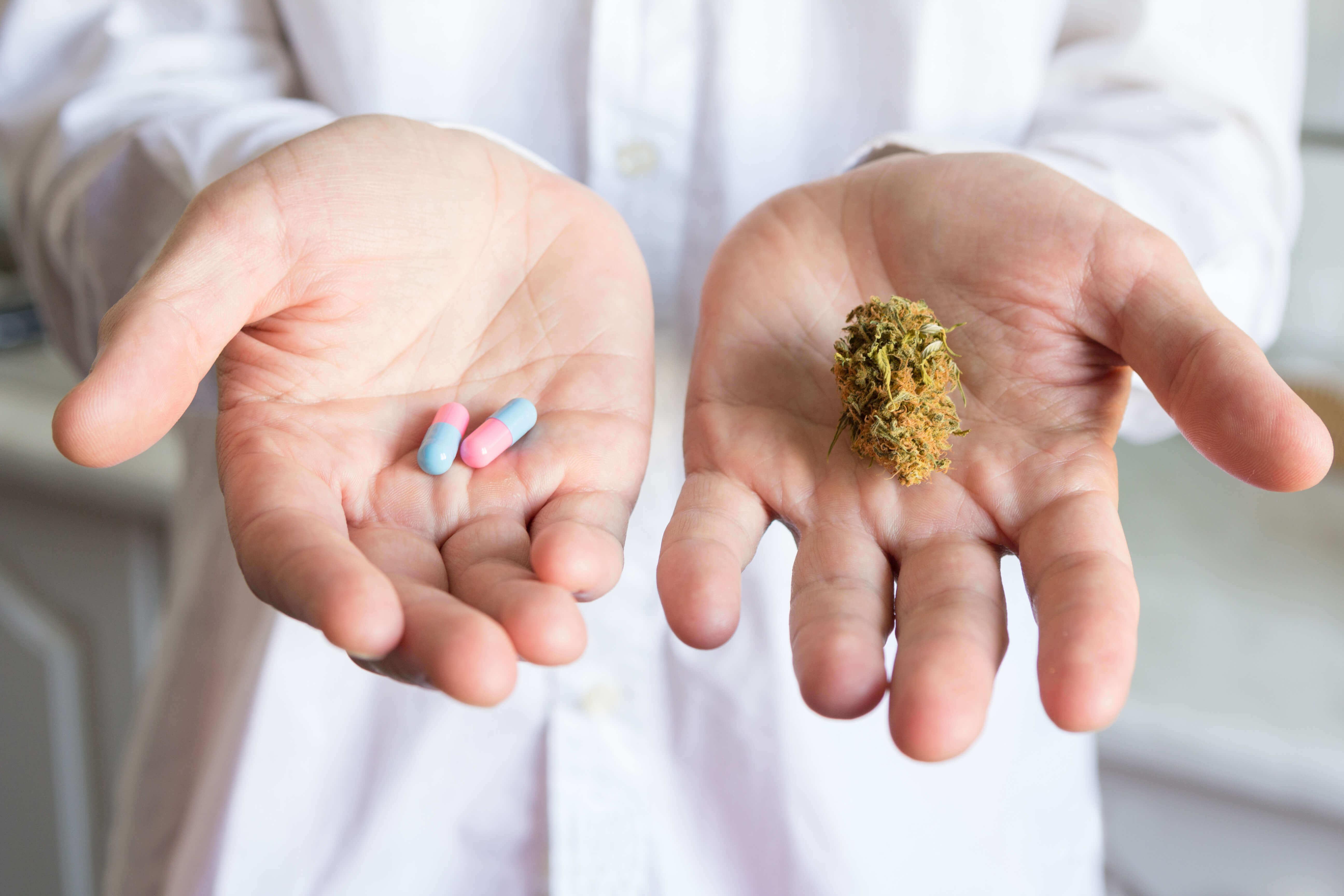 CBD-Schweiz-Medizinisches-Cannabis-Wann-wird-es-kommen