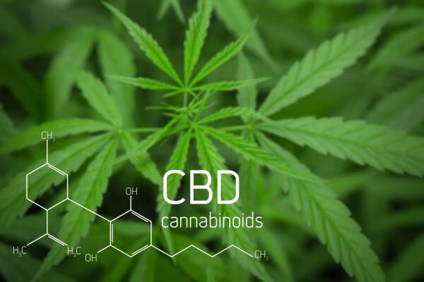 CBD-Cannabidiol-What-is-CBD-Easy-to-understand-a-simple-and-concrete-guide-to-cbd-easy